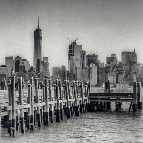 wet plate photograph of the Manhattan skyline as seen from Liberty Island.