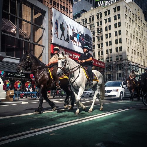 In the modern hussle bussle of New York City, sometimes the old ways are the best. these New York city police officers patrol the streets by horseback.